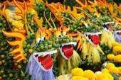 Cùng chiêm ngưỡng kỳ hoa dị thảo ở chợ hoa Tết Sài Gòn