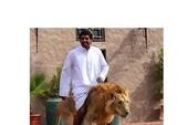 'Choáng' với những hình ảnh về cuộc sống xa xỉ ở Dubai