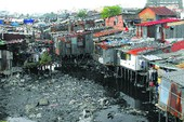 TP.HCM: Di dời hơn 5.300 căn nhà trên kênh rạch trong 5 năm