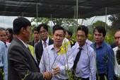 Phó Thủ tướng thăm mô hình sản xuất tại Lâm Đồng