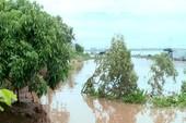 Liên tiếp sạt lở khu vực giáp sông Tiền