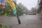Đường phố Tuy Hòa-Phú Yên bị bão số 12 quật tan hoang