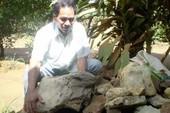 Tìm đá cảnh trên buôn Nausari