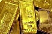 Các doanh nghiệp chưa có ý định xuất khẩu vàng