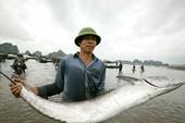 Chợ cá nổi Bến Do ở Quảng Ninh