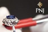 Lương và phụ cấp của CEO PNJ dự kiến là 110 triệu đồng/tháng