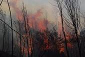 Lào Cai: Lại cháy rừng ở nhiều nơi
