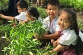TP.HCM: 9 trường học nào theo mô hình tiên tiến?