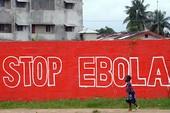 Thụy Điển phát hiện ca bệnh đầu tiên nghi nhiễm virut Ebola