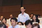 Dự án sân bay Long Thành: Bay bổng lạc quan lẫn ủng hộ dè dặt