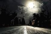 Bạn sợ bóng tối và sợ lái xe ban đêm?