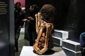 Cuộc triển lãm trưng bày xác ướp
