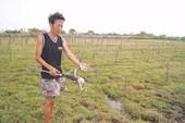 Kiểm tra các giếng nước gần bãi xỉ Vĩnh Tân