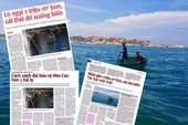 Hiệp hội tôm lên tiếng vụ nhận chìm 1 triệu m3 bùn, cát
