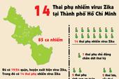Infographic: 14 thai phụ nhiễm virus Zika tại TP.HCM