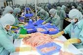 Vì thủ tục, mất cơ hội xuất khẩu 100 tấn mỡ cá