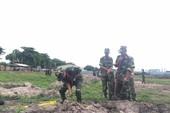 TP.HCM tiếp tục tìm mộ liệt sĩ ở Tân Sơn Nhất