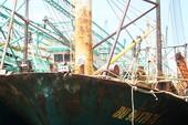 Ngư dân yêu cầu thay vỏ tàu thép Trung Quốc