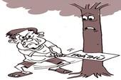 Đốn cây để trả thù… cả xóm!
