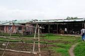 Vườn rau 'nhạy cảm' ở Đà Nẵng không có trong quy hoạch