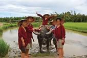 Con muốn về Việt Nam vui Tết!