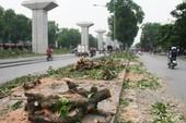 Từ chặt cây xanh Hà Nội đến lấp sông ở Đồng Nai