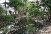 Khẩn cứu con kênh ô nhiễm nhất Sài Gòn