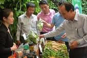 'Cơn sốt' nông nghiệp organic