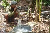 Các trại heo Đồng Nai đang 'giết' môi trường