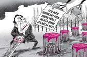 'Tiền trảm hậu tấu': Trật tự xã hội bị đảo lộn