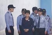 Bà Park đối đầu người từng bị mình giáng chức
