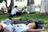 Nắng nóng kinh hoàng, đời sống người dân đảo lộn