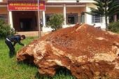 Giao đá canxedon 20 tấn cho khu sinh quyển Langbiang