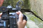 Kết luận chính thức về nguyên nhân sụt lún đất ở Đà Lạt