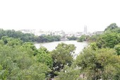 Chủ tịch Hà Nội: Không có chuyện thay cây xanh Hồ Gươm