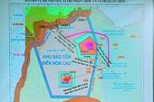 Chọn đổ 1 triệu m3 gần Hòn Cau là để 'giảm chi phí'