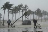 Nước Mỹ choáng váng vì 'quái vật' Irma