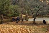 Triều Tiên thay chỉ huy nơi lính đào tẩu qua Hàn Quốc