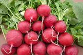 8 thực phẩm vàng trị bệnh trĩ