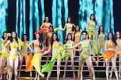 Đề nghị tạm hoãn cuộc thi Hoa hậu Hoàn vũ 2017