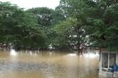Hà Nội: Lũ sông Hồng cao nhất trong 10 năm qua
