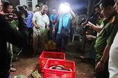 Trắng đêm giải cứu thú rừng quý hiếm ở Bình Phước