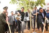 Chủ tịch nước: Trồng rừng là nhiệm vụ cấp bách, lâu dài