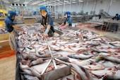 Mỹ sẽ tiếp tục áp thuế cá tra, basa Việt Nam