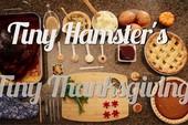 Chuột hamster đón lễ tạ ơn với bữa tiệc mini thịnh soạn