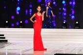 Ngắm dàn mỹ nữ Hoa hậu Hoàn vũ VN diện áo dạ hội