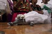 Kỳ lạ tục đám cưới với... cá sấu ở Mexico