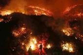 Diện tích cháy rừng California lan rộng kinh hoàng