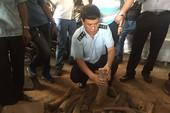 Phát hiện hơn 1.000 kg ngà voi núp trong... thùng phuy