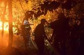 Hà Nội: Cháy rừng Sóc Sơn lớn nhất trong lịch sử